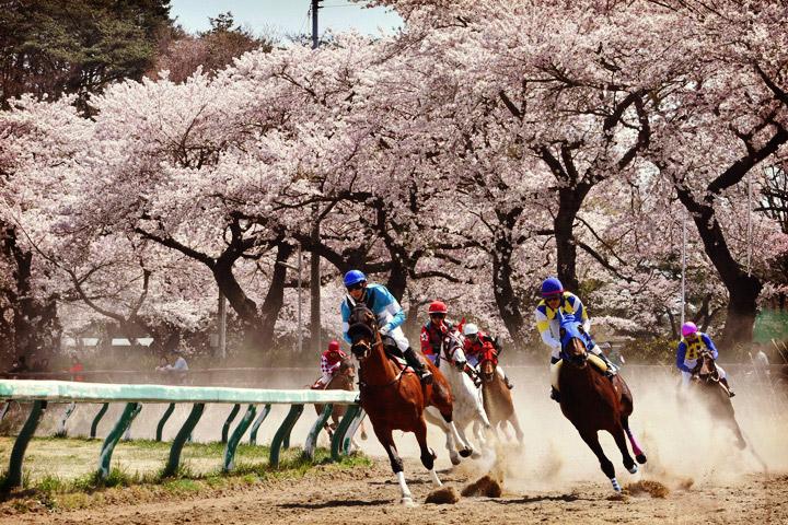 野馬追振興春季競馬大会
